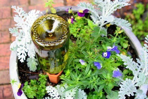 PLANTER PERFECT VACATION WATERING – Automatic Self Water, Plant Spikes Water House Plants and Flowers – Recycled Wine Bottle Drip Irrigation System With Safer Packaging – 100% Satisfaction Guarantee!