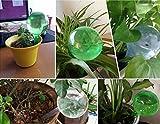 Fashionclubs Aqua Globes Small Plant Automatic Self Watering PVC Bulbs Ball,Pack of 4