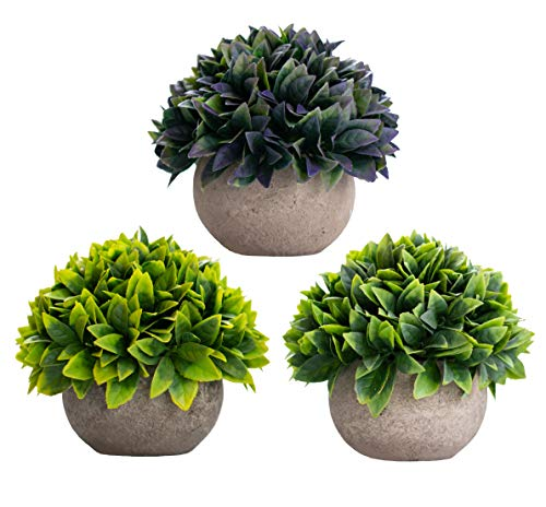 (3 Piece - Artificial Fake Plants Decor - Small Faux Succulent Cactus Plant Tree Decorations For Rustic Home, Wall, Bedroom, Bathroom, Farmhouse, Mantle Shelf, Living Room, Kitchen, House, Indoor Pot)