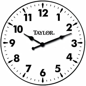 Taylor Precision Products Patio Clock (12 Inch)