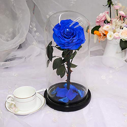 sexyrobot Beauty And The Beast Rose, Handmade Preserved Fresh Flower Real Rose with Fallen Petals in a Glass, with Exquisite Box for Valentine's Day, Mother's Day, Christmas (Blue) by sexyrobot (Image #4)