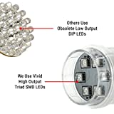 Color-Changing Hot Tub Spa Light - 18 LEDs - Vivid