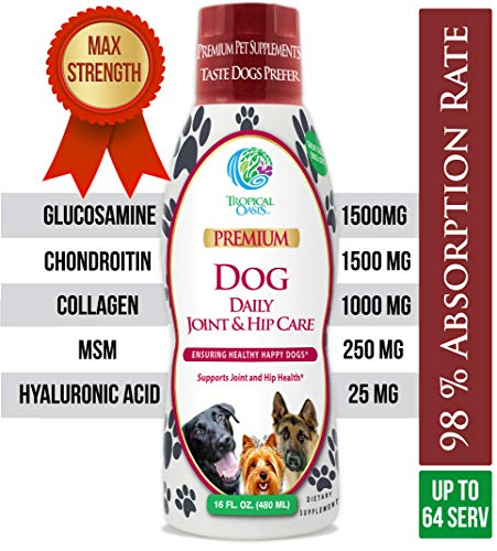 VETERINARIAN DEVELOPED Hip & Joint Supplement for Dogs - Max Strength Liquid Glucosamine for Dogs w/Chondroitin, MSM, Hyaluronic Acid PLUS Collagen -Arthritis Pain Relief for Dogs -16oz, Up to 64 Serv