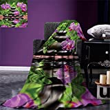 smallbeefly Spa Decor Digital Printing Blanket Zen Basalt Stones and Orchid Reflecting on Water Greenery Wellbeing Tropical Summer Quilt Comforter