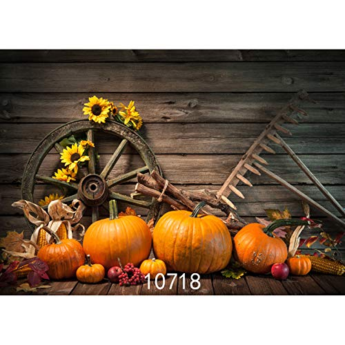 (SJOLOON Halloween Backdrop 7x5ft Autumn Pumpkin Backdrop Children Photography Background Studio Prop 10718)