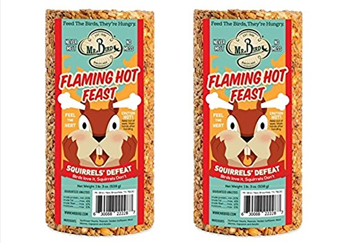 2-Pack of Mr. Bird Flaming Hot Feast Small Cylinder 19 oz.