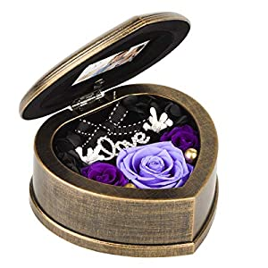 EINID Handmade Preserved Flower Rose, Preserved Fresh Flower Eternity Rose in Heart Musical Box, Gift for Her,Women and Girls on Mother's Day,Valentine's Day,Birthday or Anniversary(Music Purple Rose)