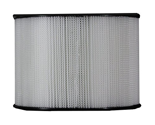 (Duracraft Replacement HEPA Filter HEP-5020 by Magnet by FiltersUSA)