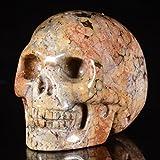 """Mineralbiz 1.3"""" - 1.5"""" Natural Ocean Jasper Crystal Gemstone Human Skull Head Sculpture Carving"""