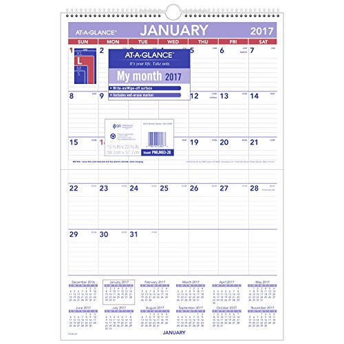 GLANCE Calendar Erasable Monthly PMLM03 28