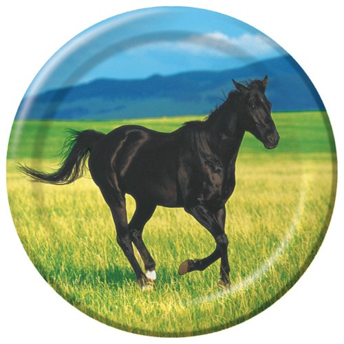 Creative Converting Wild Horses 8 Count Paper Lunch Plates
