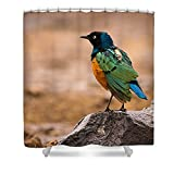 Pixels Shower Curtain (74'' x 71'') ''Superb Starling''