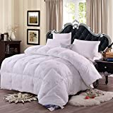 NATURETY All Season White Down Alternative Comforter,Light Duvet Insert (Full/Queen, White)