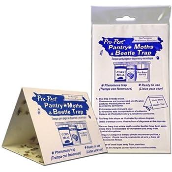 Amazon Com Pro Pest Pantry Moth Traps 6 Ready To Use