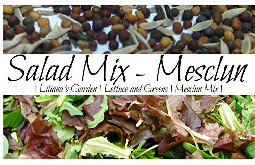 Salad Garden Seeds - Mesclun Mix - Gourmet Greens and Lettuce Alternative - Heirloom Varieties - Liliana's Garden