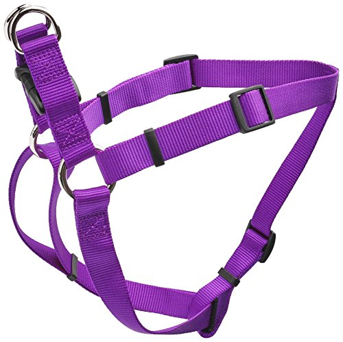 Coastal Pet Products DCP6945PUR Nylon Comfort Wrap Adjustable Dog Harness, 1-Inch, Purple