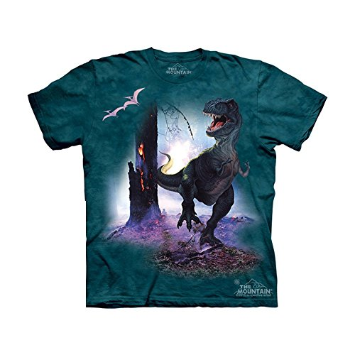 The Mountain Kids Rex T-Shirt, Small, Teal