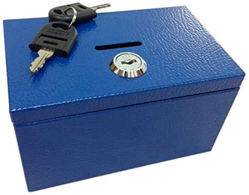 Sandusky Buddy Products Stamp And Coin Box, Blue (0505-B) (Buddy Box)