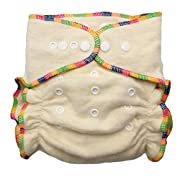 Hemp/Organic Cotton Fitted Cloth Diapers (Includes 2 Inserts; Fits 7-25lbs) (1 Pack)