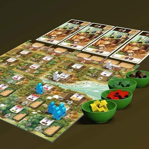 Asmodee-Century Il New Mondo - Juego de Mesa, Color 7508: Amazon.es: Juguetes y juegos