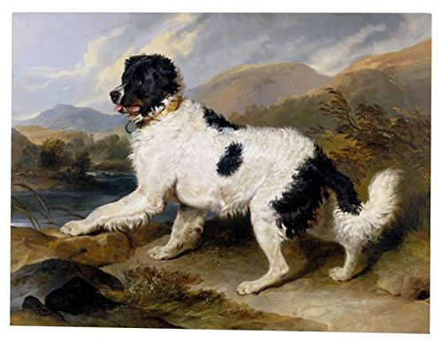 Wall Art Print Entitled Landseer, Edwin Henry (Sir, RA) - Lion- A Newfound by Celestial Images | 21 x 16