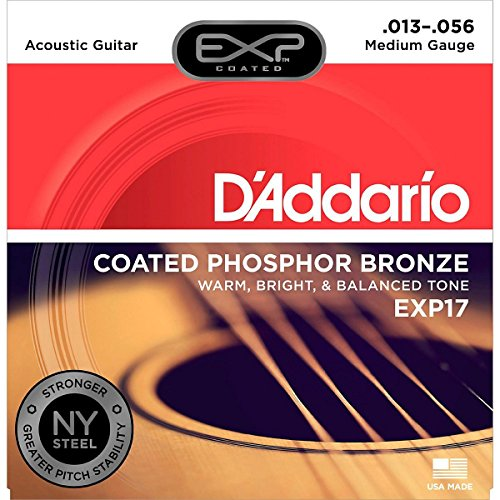 D'Addario Accordion Accessory (EXP17), Medium, 13-56