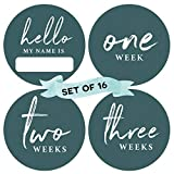 Peachly Baby Monthly Milestone Stickers (Set of 16) - Birth to 12 Months | 4 Inches