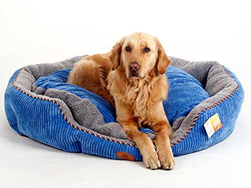 - PLS Pet Snugg Bolster Self-Warming Pet Bed (Blue, XX-Large, 39Wx45L), Dog Bed for Large Dogs, Completely Washable, Easy-Clean, Modern Design, Durable
