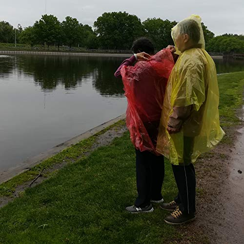 Leberna Rain Ponchos for Adult & Teens | Disposable Poncho for Women & Men | One Size Fit All with Attached Hood | Emergency Waterproof Raincoat Camping Outdoors Theme Parks Wholesale Lot Bulk Pack ()