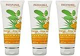PATANJALI Face Wash - Orange And Aloevera (60g) (Pack of 3)