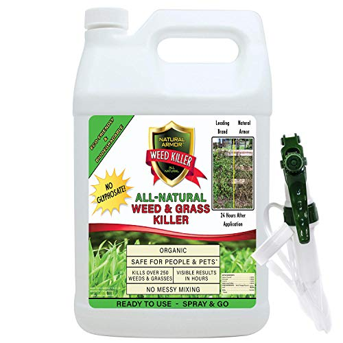 Natural Armor Weed & Grass Killer All-Natural Concentrated Formula. Contains No Glyphosate. 128-Ounce Gallon Pet Safe (Best Weed Spray For Flower Beds)