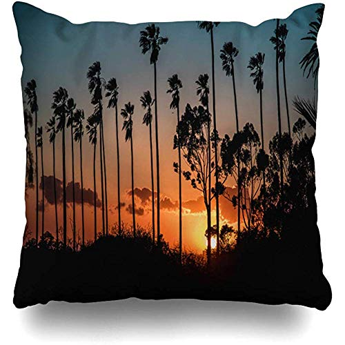 Throw Pillow Cover Cushion Case Square 18x18 Inch Downtown Orange Skyline Los Angeles Ca United States Beach Feb Night California City Attraction Home Decor]()