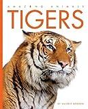 Amazing Animals - Tigers, Valerie Bodden, 1583417206