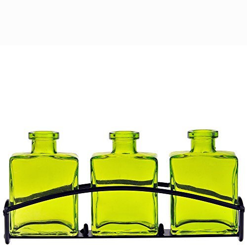 Couronne Company M443-200-01 Rio Three Recycled Glass Vases & Metal Stand, 4 3/4