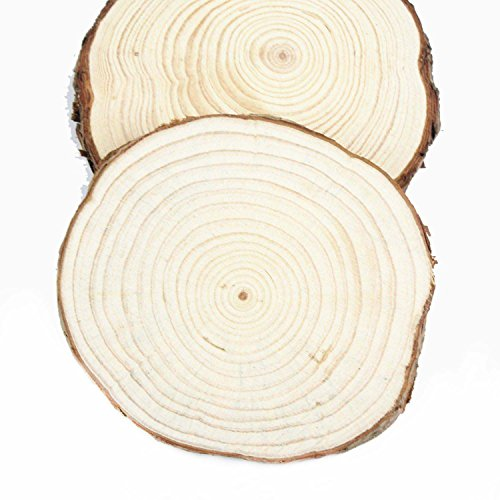 4 Packs Wood Slice 3''-6'' Round Natural Wood Slices, Wedding Table DisplayWood Slab, Rustic Wedding Decor (5.5-6.2 Inch) by FahionFocus