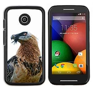 Dragon Case - FOR Motorola Moto E (1st Gen, 2014) - hawk eagle bird nature white beak feather - Caja protectora de pl??stico duro de la cubierta Dise?¡Ào Slim Fit