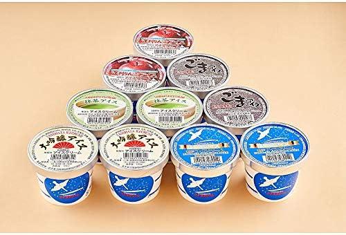 ( 産地直送 お取り寄せグルメ ) 田野畑牛乳 アイス10個セット(大吟醸・バニラ・江刺りんご・ごま・抹茶 各2個)