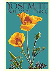 Yosemite National Park California Poppy Letterpress 24x36 Giclee Gallery Print Wall Decor Travel Poster