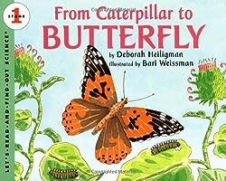 From Caterpillar to Butterfly by Deborah Heiligman