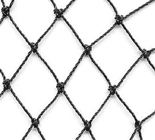 Aviary Netting 1'' Heavy Knotted Poultry Net (25' x 25')