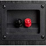 Polk Audio Signature Series S30 Center Channel Speakers for Home Theater, Surround Sound (2 Drivers) and Premium Music | Powerport Technology | Detachable Magnetic Grille
