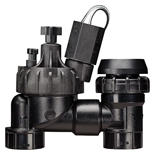 Rain Bird JTVASF100 Jar Top Anti-Siphon Valve with Flow Control, 1