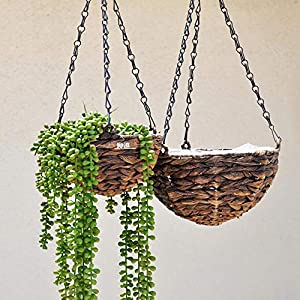 Artiflr Artificial Hanging Plants Fake Succulents String of Pearls Fake Hanging Basketplant Lover's Tears Succulent Branch for Home Kitchen Office Garden Wedding Decor 2