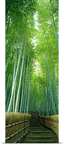 greatBIGcanvas Entitled Path Through Bamboo Forest Kyoto Japan Poster Print, 12