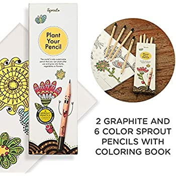 Amazon.com : Sprout Plantable Coloring Pencils with Seeds ...