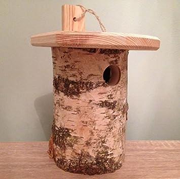 ChapelWood abedul de plata nidal - retador caja - cajas nido para aves - Casas del pájaro: Amazon.es: Jardín
