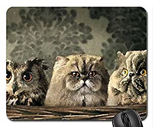 Family Portrait Mouse Pad, Mousepad (Cats Mouse Pad, 10.2 x 8.3 x 0.12 inches)