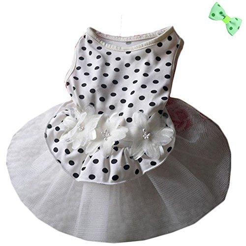 P&Q Estore - Disfraz de Perro para Boda, Vestido de Camisa para Perros pequeños y Gatos, Color Blanco