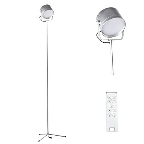 5 Feet LED Remote Control Led Floor Lamp For Living Room Bedroom 700 Lumens  Bright (