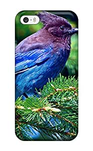 Fashionable Style Case Cover Skin For Iphone 5/5s- Bird